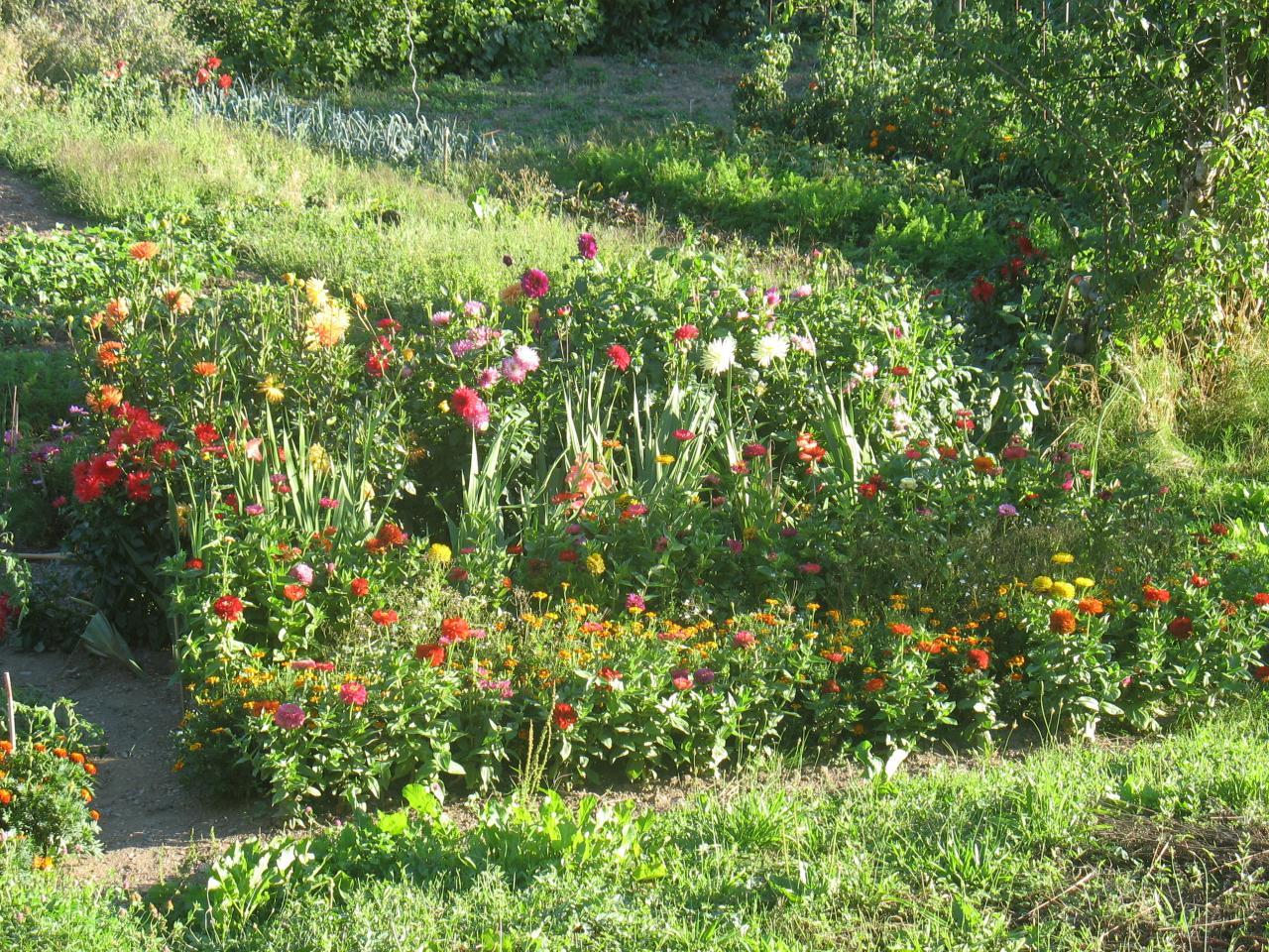 Un jardin fleuri à LAROQUE