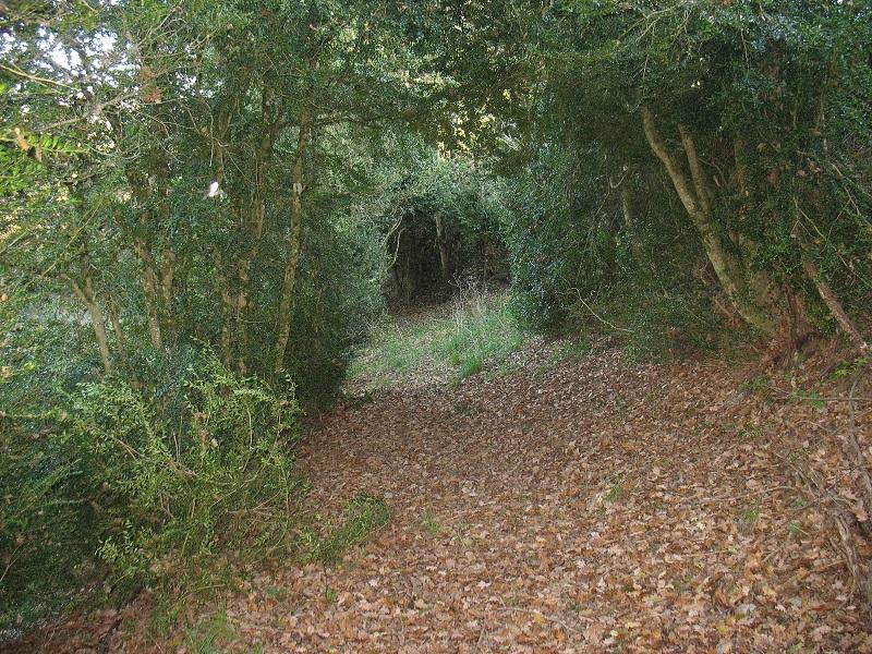 Chemin de randonnées sur la commune