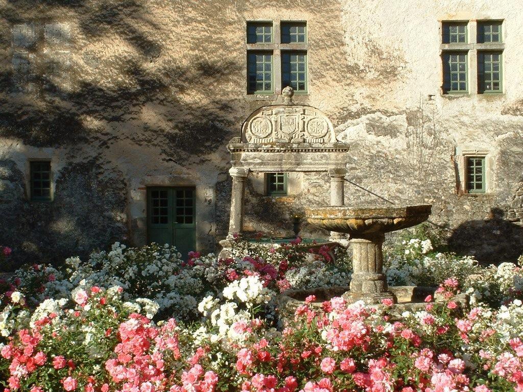 Puit dans la cour d'honneur du chateau de FAYET